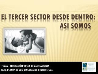 EL TERCER SECTOR DESDE DENTRO:  ASI SOMOS