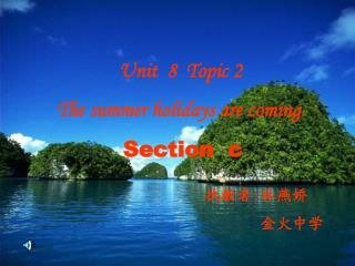 Unit  8  Topic 2    The summer holidays are coming . Section   c