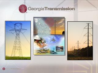 Owned by Georgia's Electric Membership Cooperatives
