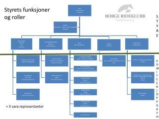 Styrets funksjoner  og roller