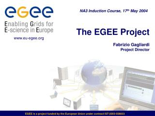 The EGEE Project Fabrizio Gagliardi Project Director