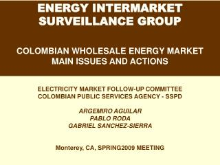 ENERGY INTERMARKET  SURVEILLANCE GROUP COLOMBIAN WHOLESALE ENERGY MARKET  MAIN ISSUES AND ACTIONS