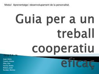 Guia per a un treball cooperatiu eficaç