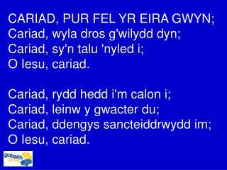 CARIAD, PUR FEL YR EIRA GWYN; Cariad, wyla dros g'wilydd dyn; Cariad, sy'n talu 'nyled i;