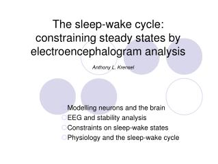 The sleep-wake cycle: constraining steady states by electroencephalogram analysis