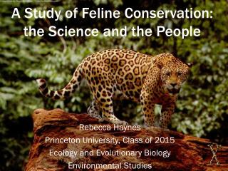 A Study of Feline Conservation: the Science and the People