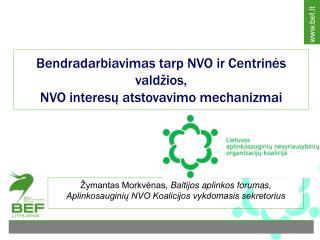 Bendradarbiavimas tarp NVO ir Centrin ės valdžios,  NVO interesų atstovavimo mechanizmai