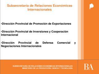 Subsecretaría de Relaciones Económicas Internacionales