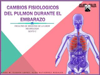 CAMBIOS FISIOLOGICOS DEL PULMON DURANTE EL EMBARAZO