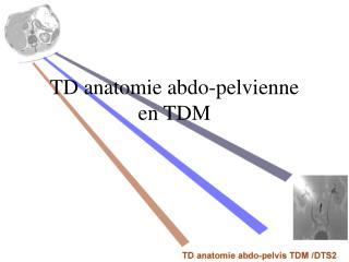 TD anatomie abdo-pelvienne en TDM