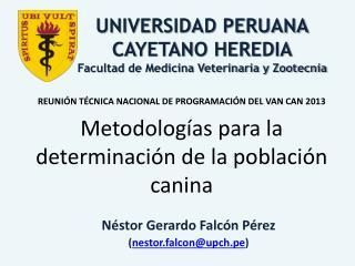 Néstor Gerardo Falcón Pérez ( nestor.falcon@upch.pe )