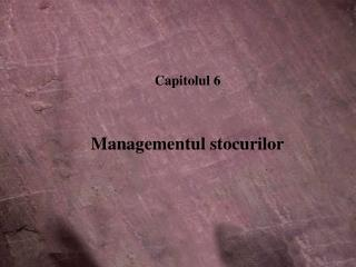 Capitolul 6 Managementul stocurilor