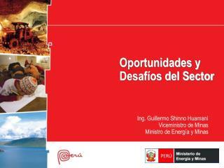 Oportunidades y Desafíos del Sector