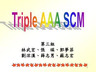 第三組 林武宏、張  瑛、郭夢菲 劉淙漢、薛志男、蘇志宏