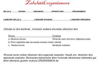 Zelulatik organismora