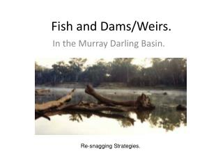 Fish and Dams/Weirs.