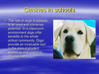 Canines in schools