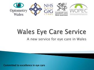 Wales Eye Care Service