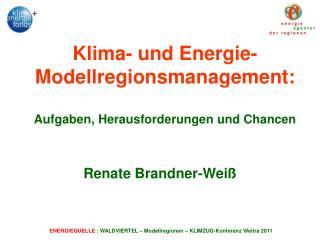 Klima- und Energie-Modellregionsmanagement:  Aufgaben, Herausforderungen und Chancen