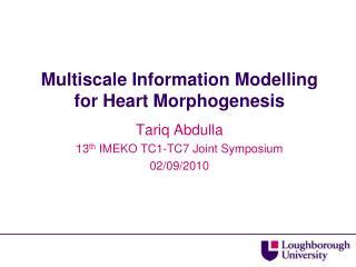 Multiscale Information Modelling for Heart Morphogenesis