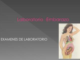Laboratorio  - Embarazo