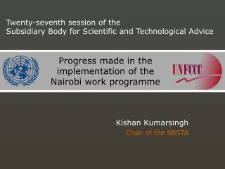Progress made in the implementation of the Nairobi work programme