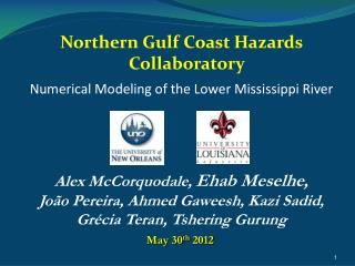 Numerical Modeling of the Lower Mississippi River