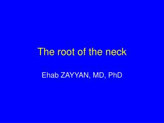 The root of the neck