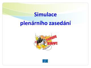 Simulace plenární ho  zasedání