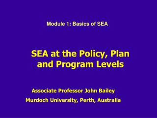 SEA at the Policy, Plan and Program Levels