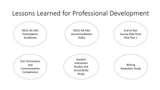 Lessons Learned for Professional Development