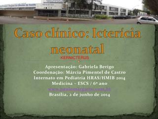Apresentação : Gabriela  Berigo Coordenação :  Márcia  Pimentel de Castro