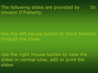 Use the left mouse button to move forward through the show