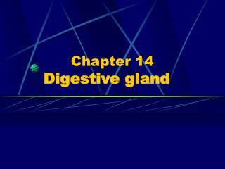 Chapter 14   Digestive gland