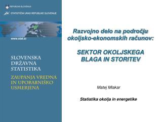 Razvojno delo na področju okoljsko-ekonomskih računov:  SEKTOR OKOLJSKEGA BLAGA IN STORITEV