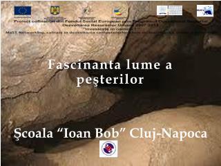 """Fascinanta lume a  peşterilor Şcoala """"Ioan Bob"""" Cluj-Napoca"""
