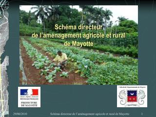 Schéma directeur de l'aménagement agricole et rural de Mayotte
