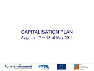 CAPITALISATION PLAN Avignon, 17  –  18 of May 2011