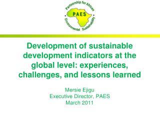 Mersie Ejigu Executive Director, PAES March 2011