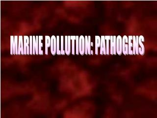 MARINE POLLUTION: PATHOGENS