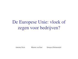 De Europese Unie: vloek of zegen voor bedrijven?