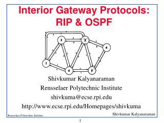 Interior Gateway Protocols:  RIP & OSPF