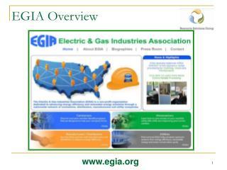 EGIA Overview
