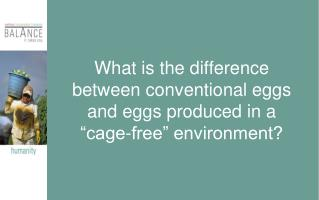 "What is the difference between conventional eggs and eggs produced in a ""cage-free"" environment?"
