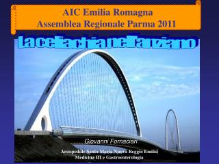 AIC Emilia Romagna Assemblea Regionale Parma 2011
