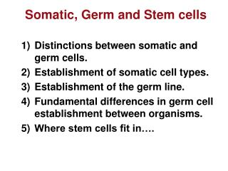 Somatic, Germ and Stem cells