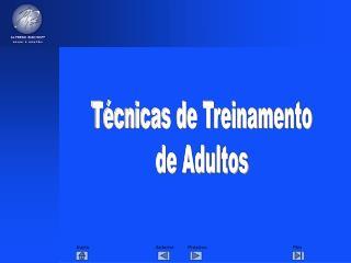 T cnicas de Treinamento de Adultos
