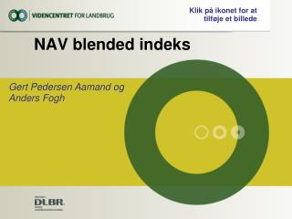NAV blended indeks
