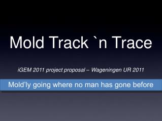 Mold Track `n Trace