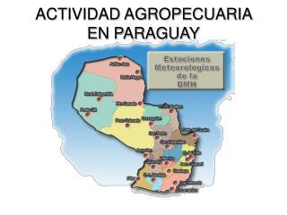ACTIVIDAD AGROPECUARIA EN PARAGUAY